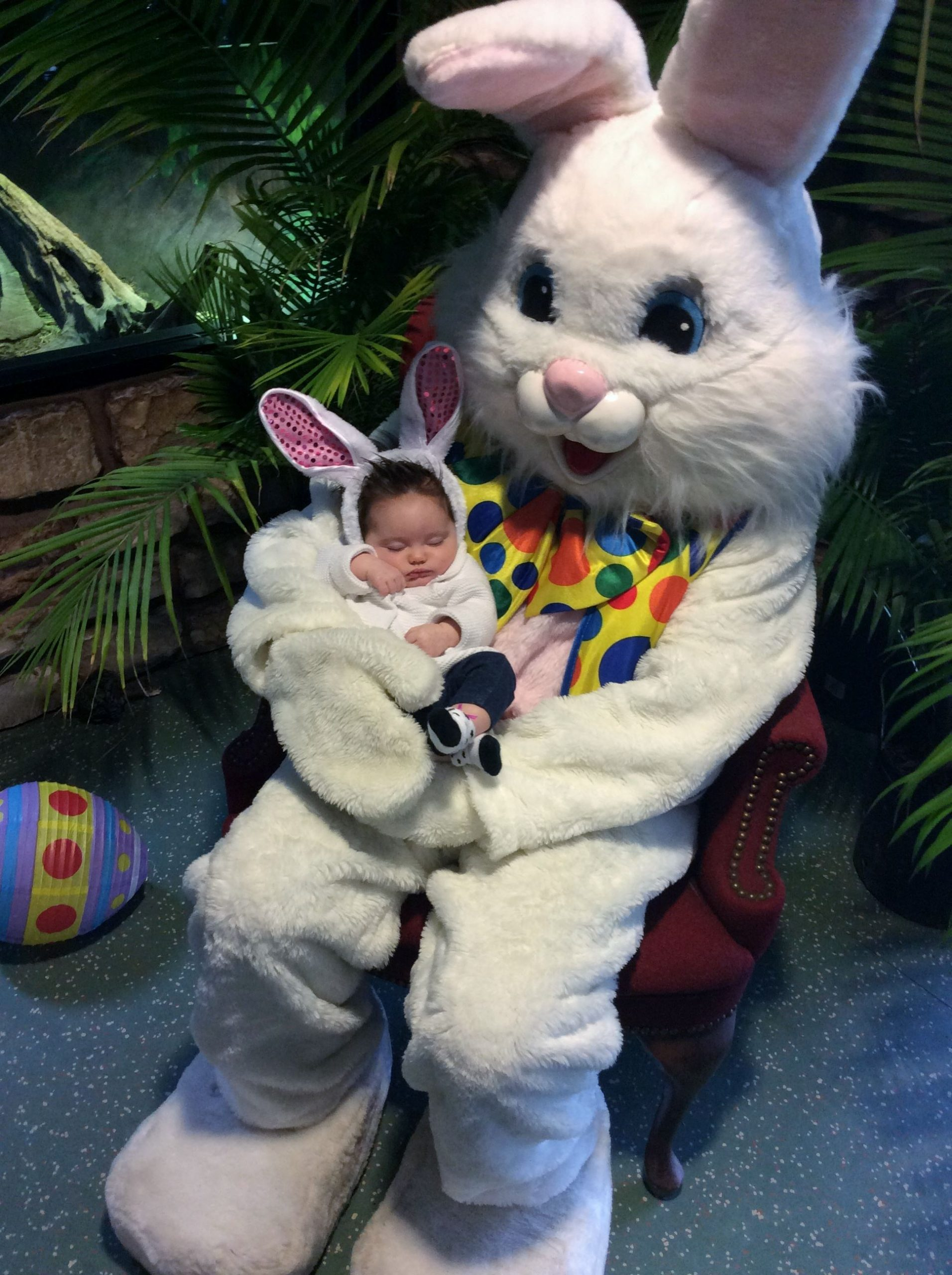Easter Bunny Photos with Kids