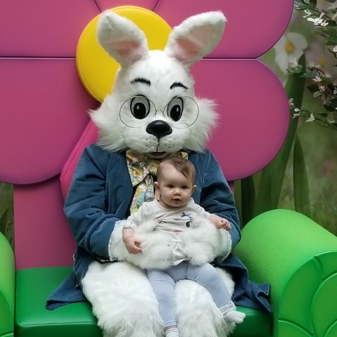 Easter Bunny Pictures Mall