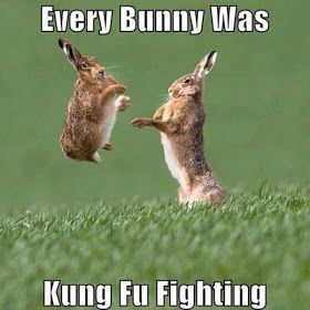 Funny Easter Captions