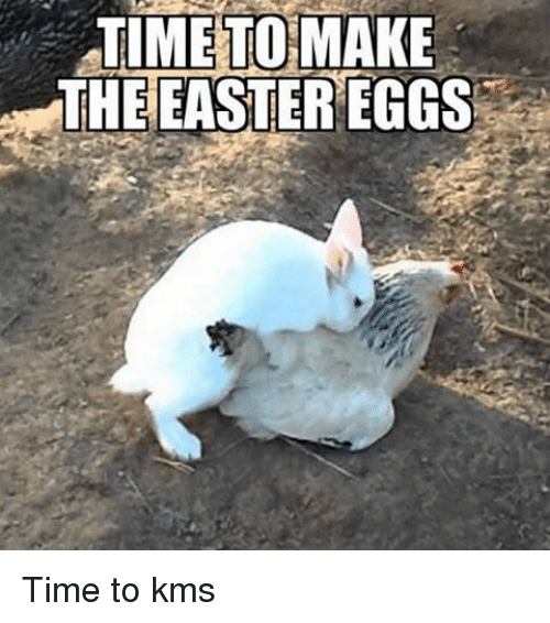 funny happy easter memes