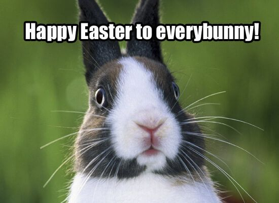 happy easter memes for facebook